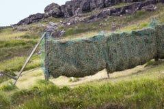 Siano skoszone łąki dobrze suszy Zdjęcia Royalty Free