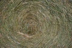 Siano spirala - materiał, tekstura zdjęcie stock