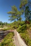 Siarkawi jeziora blisko Manado, Indonezja Zdjęcia Royalty Free