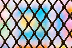 siatki barwiona tekstura Zdjęcie Stock