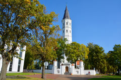 The siauliai Cathedral Saint Apostles Peter and Paul Stock Photography