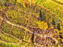 Siauliai , Lithuania: aerial above view of Hill of Crosses, Kryziu Kalnas. royalty free stock photo