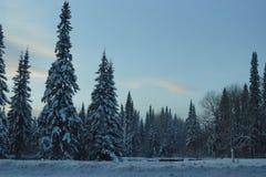 sibéria Região de Krasnoyarsk Fotografia de Stock Royalty Free