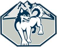 Sibérien Husky Dog Mountain Retro Photographie stock libre de droits