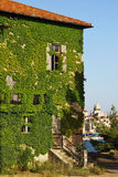 Sibenik alte Stadt, Kroatien Stockbild