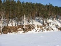Siberië, bos dichtbij post Olha Stock Afbeeldingen