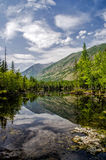 siberië Mooi groen mistmeer in bosburyatia Stock Foto