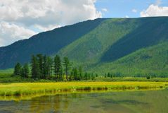 Siberia. Altai. View on green valley. Green mountains, blue sky, yellow flowers, calm lake water Royalty Free Stock Photos