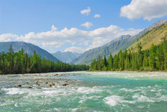 Siberia. Altai. View on green valley. Green mountains, blue sky, turquoise water of wild river royalty free stock photos