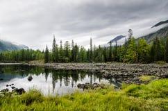 Siberia. Beautiful green fog lake in the forest. Buryatia Royalty Free Stock Image