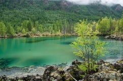 Siberia. Beautiful green fog lake in the forest. Buryatia Royalty Free Stock Photo