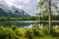 Siberia. Beautiful green fog lake in the forest. Buryatia Royalty Free Stock Images