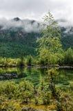 Siberia. Beautiful green fog lake in the forest. Buryatia Stock Images