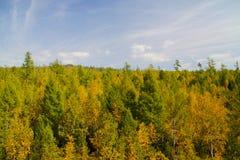 Siberia en otoño Foto de archivo libre de regalías