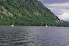 siberia Sikt från vattenområdet av Teletskoye sjön Arkivfoton