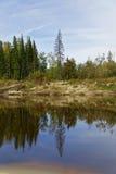 Siberia, the taiga river bank of the Big Yugan Royalty Free Stock Photos