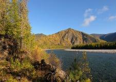 Siberian autumn landscape Royalty Free Stock Photo