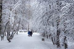 Siberian city after a snowfall Royalty Free Stock Photo