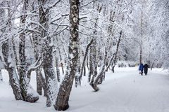 Siberian city after a snowfall Stock Images