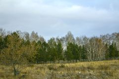 Siberian expanses in cloudy weather in late autumn stock photos