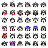 Siberian Huskies Dog Emoji Emoticon Expression Stock Photography