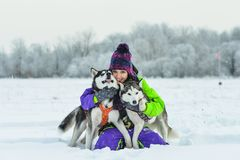 Siberian Husky closeup. Beautiful girl with husky. winter Stock Image