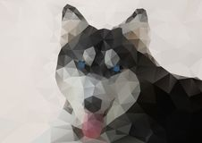 Siberian Husky Geometric Style royalty free illustration