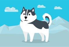 Siberian Husky Illustration in Flat Design Stock Images