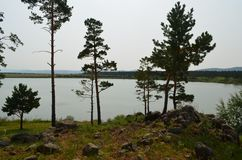 Siberian landscape with a lake, pine forest, sky. A small beautiful forest lake with picturesque vegetation, a great place for secluded relaxation royalty free stock image