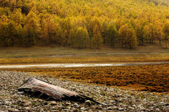 Siberian landscape in Russia Royalty Free Stock Photos
