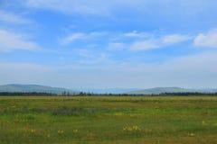 Siberian landscape Stock Photography