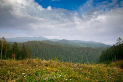 Siberian mountains, hills and forest beautiful. Landscape view under summer blue sky Royalty Free Stock Photos