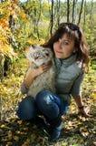 Siberian nevsky masqarade cat and young woman Royalty Free Stock Image