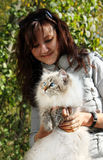 Siberian nevsky masqarade cat and young woman. In a  autumn nature Stock Photography