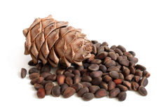Siberian pine cone and nuts Royalty Free Stock Images
