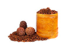 Siberian pine cones. Cones of Siberian cedar, pine cedar, nuts, wood gifts Stock Photos