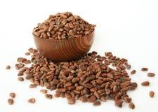 Siberian pine nuts stock image