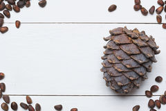 Siberian pine nuts and cone on white wooden table Royalty Free Stock Images