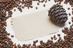 Siberian pine nuts and vintage paper sheet on white wooden table Stock Photo