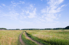 Siberian plain Royalty Free Stock Image