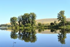 The Siberian river. Blue sky. Absolute calm. This all allows you to see in the water a reflection of any tree standing nearby stock image