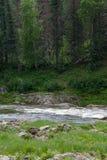 Siberian river. Small tributary of the Yenisei River. Krasnoyarsk region, Russia Royalty Free Stock Photos