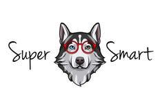 Siberian skrovlig geek Smarta exponeringsglas Toppen smart inskrift rött glasögon vektor royaltyfri illustrationer