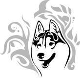 Siberian skrovligt för Head hundavel med en modell Stock Illustrationer
