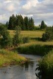siberian sommar Fotografering för Bildbyråer