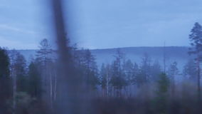 The Siberian taiga, fog, view from train stock footage