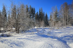 Siberian taiga on Olhinska plateau in the Baikal region in winter. Coniferous forest and valley of the river Olkha are covered with snow Stock Photography