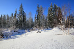 Siberian taiga at the river Olkha in the Baikal region in winter. Coniferous forest and valley of the river Olkha are covered with snow Stock Image