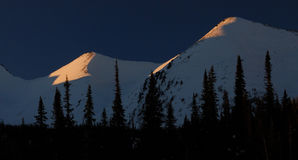Siberian taiga, vinter Ryssland, berg Royaltyfri Foto