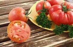 Siberian tomatoes Stock Photography